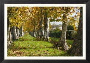 FotoSketcher - Fil du temps 010.huile