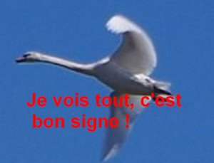Mauzac-et-Grand-Castang_07texte