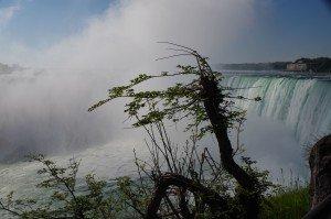 Niagara-18_25
