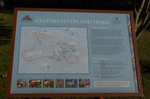 Road and Crathes_20